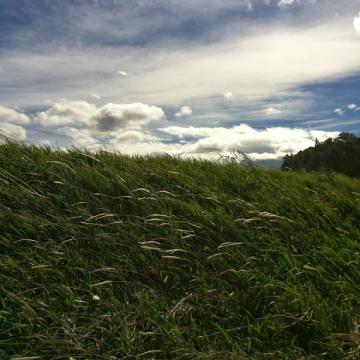 20131009CAAD10木島平中野下43km強風