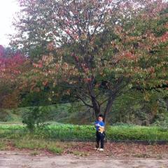 20131022公園にnobu