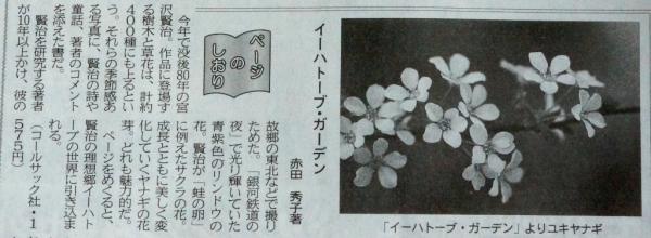 DSC08356 - コピー