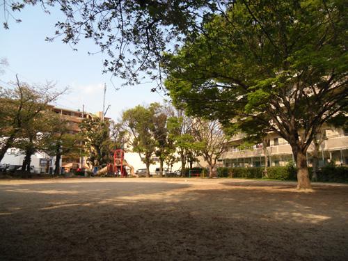 朝の公園。