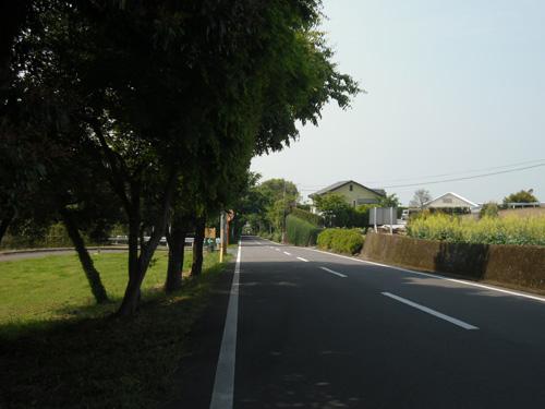 百花台への道