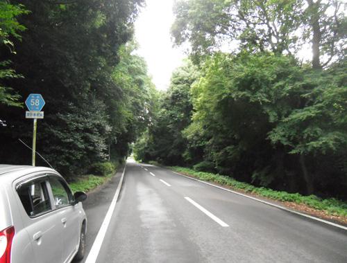 百花台への道2
