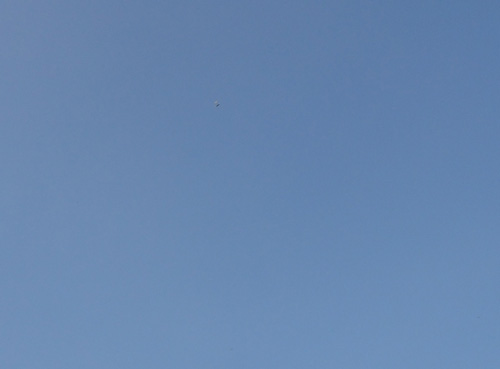 STO飛翔2