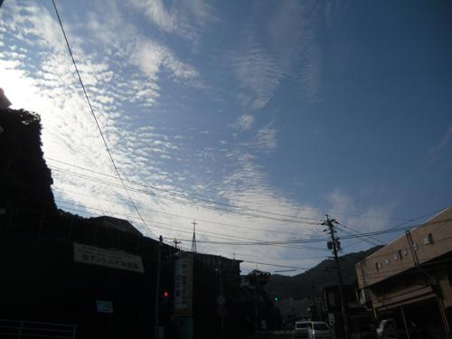 8月28日お散歩7