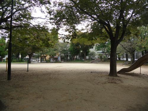いつもの公園だけど、違う角度からね。