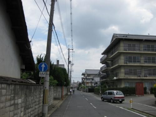 kamitu4 (3)