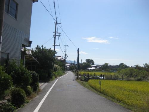 kamitu5 (10)