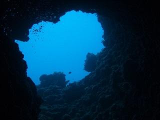 20130826女王海底36mより穴