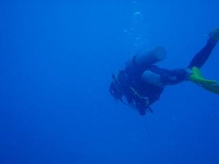 20110720沖縄区切りダイビング