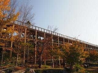 20131101京阪奈紅葉観月橋