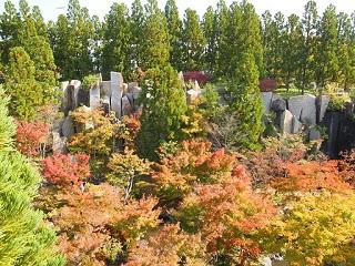 20131101京阪奈紅葉石柱