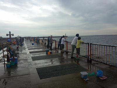 南港の釣り場
