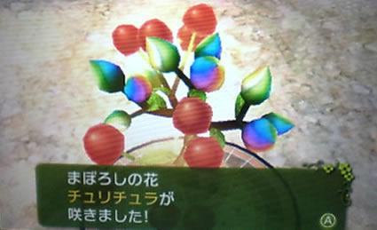 blog20130927l.jpg