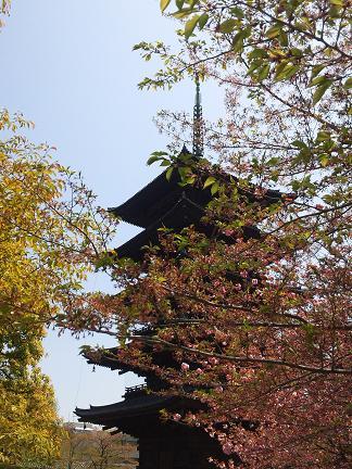東寺のブログ用五重