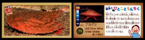 正栄デリシィ 深海ハンター クランチチョコ 深海生物カード No,01 アカグツ