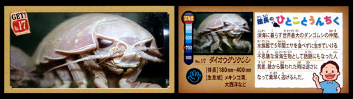 正栄デリシィ 深海ハンター クランチチョコ 深海生物カード No,17 ダイオウグソクムシ