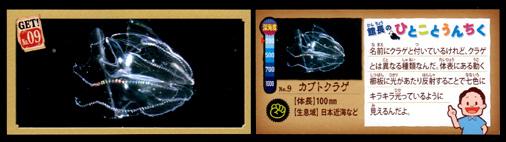 正栄デリシィ 深海ハンター クランチチョコ 深海生物カード No,09 カブトクラゲ