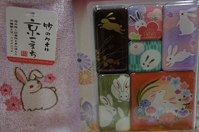 京都から来たうさぎさん