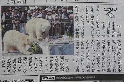 北海道新聞しろくまちゃん