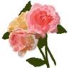 hana7_201309242205312c4.jpg