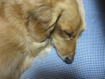 眠いけど2