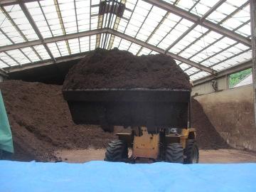 堆肥撒きのち雨3