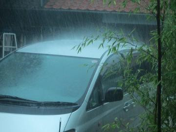 堆肥撒きのち雨4