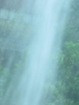堆肥撒きのち雨5