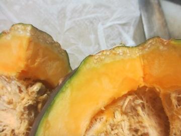 かぼちゃ、ほぼ収穫6
