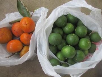 柿とカボス