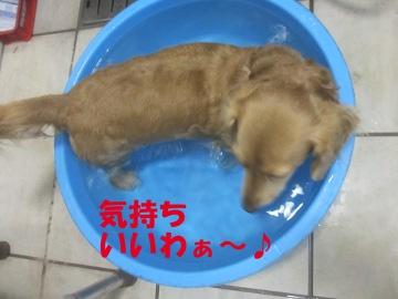 誕生日にお風呂2
