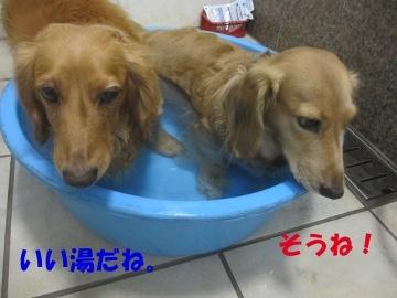 誕生日にお風呂3