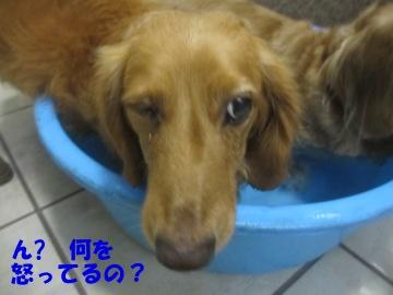誕生日にお風呂4