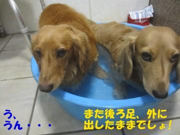 誕生日にお風呂5