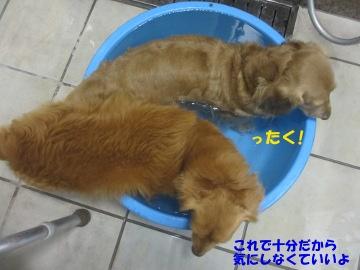 誕生日にお風呂6