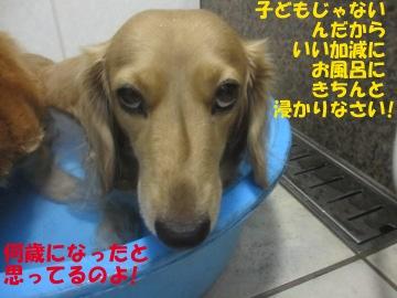 誕生日にお風呂8