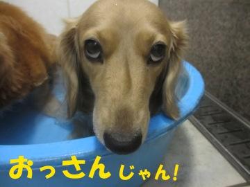 誕生日にお風呂10