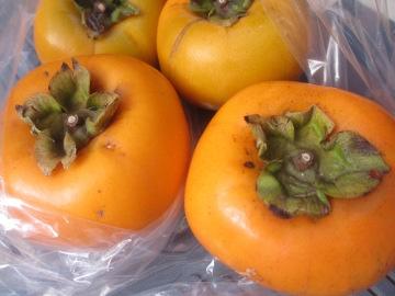 トネ柿が7