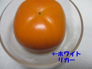 トネ柿が9
