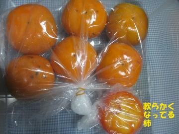 トネ柿が11