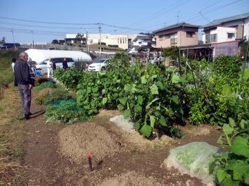 農園視察2