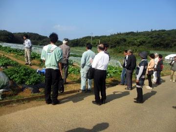 農園視察3