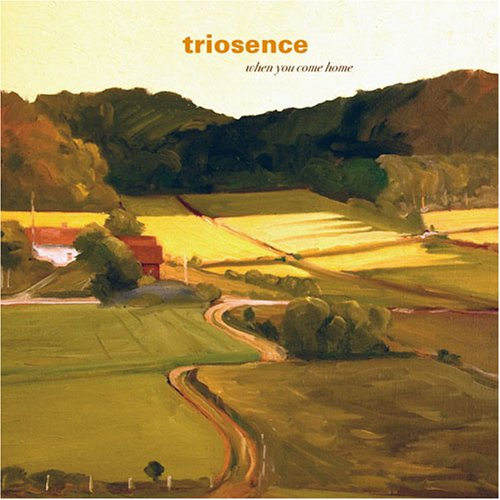 When You Come Home Triosence