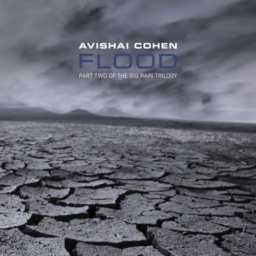Flood Avishai Cohen