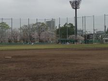 綾瀬の野球場