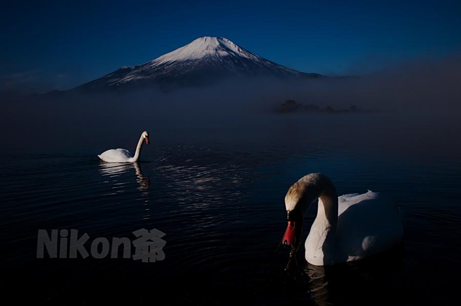 2013 11 24 山中湖朝 D3x (31)R@SSS