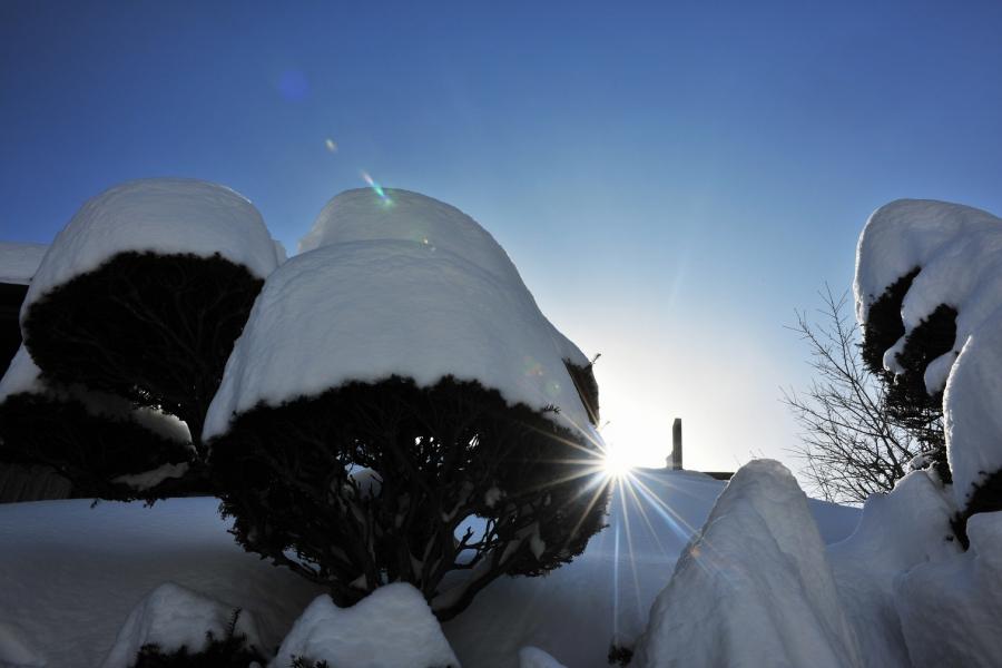 2014 02 09  忍野散歩 (69)J@SS