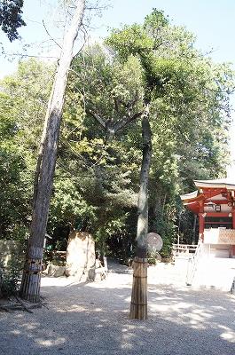 越木岩神社2