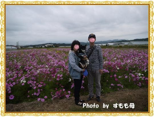 P1020870-1.jpg