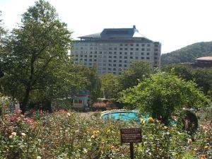 花巻温泉バラ園2013-10-13-087